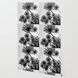 Below The Daisies Wallpaper
