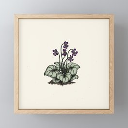 Violets Framed Mini Art Print