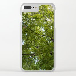 Bottom view of a crown of a huge green tree Clear iPhone Case