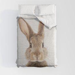 Rabbit - Colorful Comforters