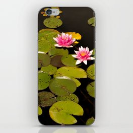 Nature in the lake iPhone Skin