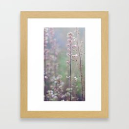 Flower Buds - III Framed Art Print