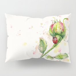Ladybug Lane Pillow Sham