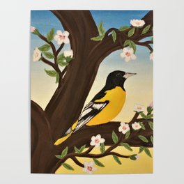 Oriole at Sunset Poster