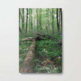 Forest Log Metal Print