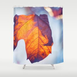 Shine in my Heart Shower Curtain