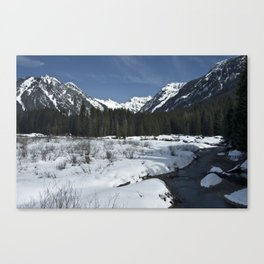 Spring in the mountains Canvas Print