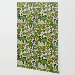 Branching out Wallpaper