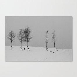 Tree line and snow Canvas Print