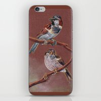 sparrow iPhone & iPod Skins featuring Sparrow by Ju.jo.weh