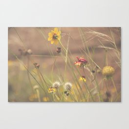 Wind-kissed Canvas Print