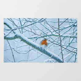 Robin in the cold Rug
