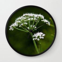 wild herbs 2 Wall Clock