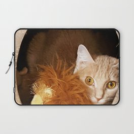 Kitty Cat in a Box Laptop Sleeve