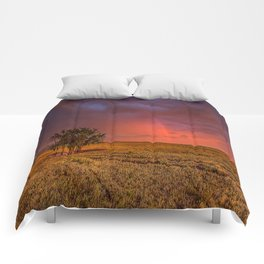 Fire Within - Red Sky and Rainbow Over Lone Tree on Great Plains Comforters