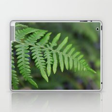 green fern leaves. floral nature wild plant photography. Laptop & iPad Skin