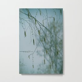 Nature's Chantilly Lace Metal Print