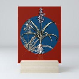 Vintage Botanical Scilla Patula on Circle Blue on Red Mini Art Print