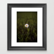 I've been longing for, daisies to push through the floor Framed Art Print