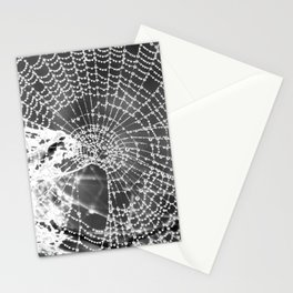 Raindrop Covered Spiderweb Stationery Cards
