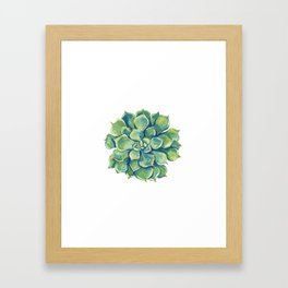 November Succulents Framed Art Print
