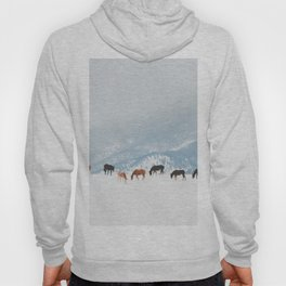Winter Pastures Hoody