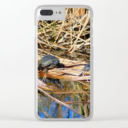 Four Box Turtles Clear iPhone Case
