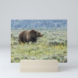 Smiling Grizzly #399 Mini Art Print