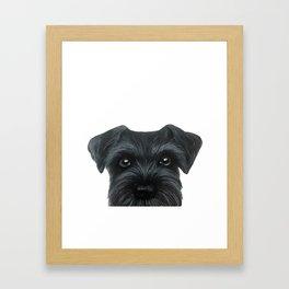 Black Schnauzer, Dog illustration original painting print Framed Art Print