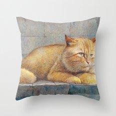 Ginger Throw Pillow