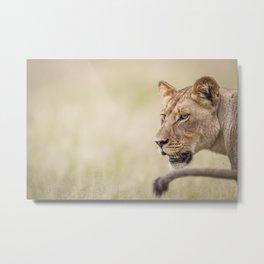 Half a Lion Metal Print