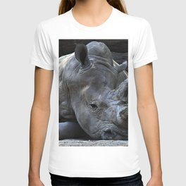 GREY RHINO LYING BESIDE GREY CUT LOGS T-shirt