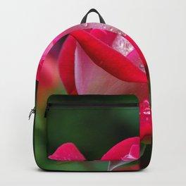 Dew Drops on Pink Flower Backpack