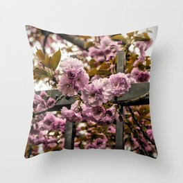 Cherry Blossoms - Japan Throw Pillow
