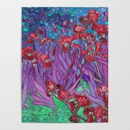 Vincent Van Gogh Irises Painting Cranberry Purple Palette Poster