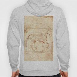 Da Vinci Horse In Piaffe Hoody