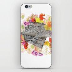 Ruban  iPhone & iPod Skin