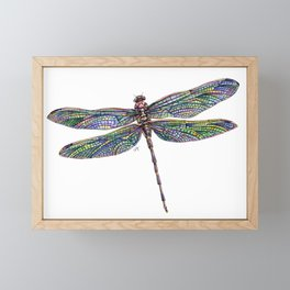 Colorful Dragonfly Drawing Framed Mini Art Print
