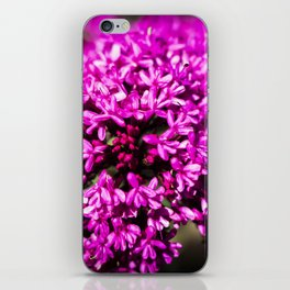 Pink Valerian iPhone Skin