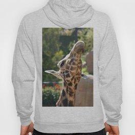 Baringo Giraffe Hoody