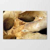 stone Canvas Prints featuring Stone by Vivian Fortunato