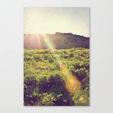Vintage Flare Canvas Print