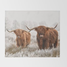 Hairy Scottish highlanders in a natural winter landscape. Throw Blanket