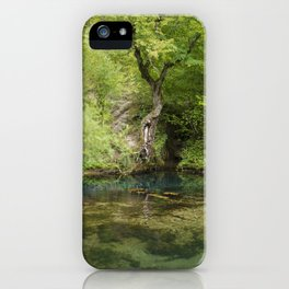 River spring in the forest iPhone Case