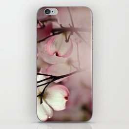 Under the Dogwood Tree iPhone Skin