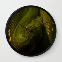 monty python Wall Clocks featuring basking python by Claes Touber