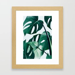 Monstera #society6 #artprints #buyart Framed Art Print