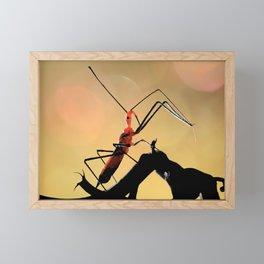 Assassin Bug Framed Mini Art Print