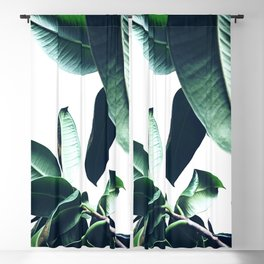 Ficus Elastica #26 #foliage #decor #art #society6 Blackout Curtain