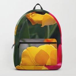 Сolorful tulips Backpack